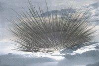 Arnulf rainer schwarze strahlen 6682 small