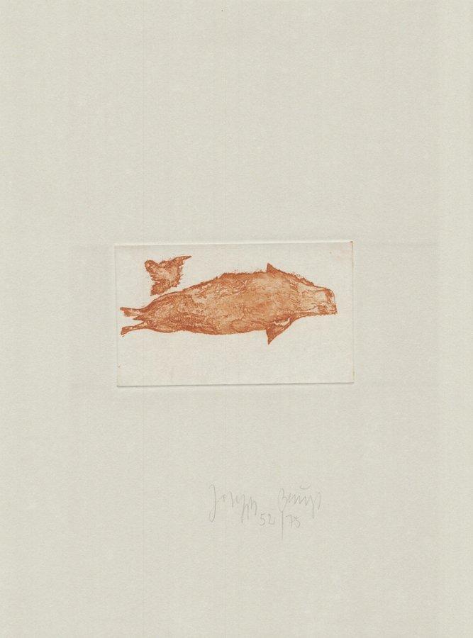 Joseph Beuys Werk Zirkulationszeit: Meerengel Robbe III