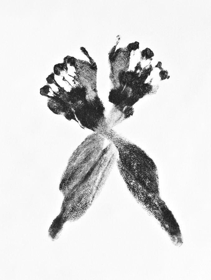 Aura Rosenberg tied up 2 Grafik Lithographie