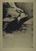 Joseph Beuys Aus Eurasienstab Grafik Siebdruck