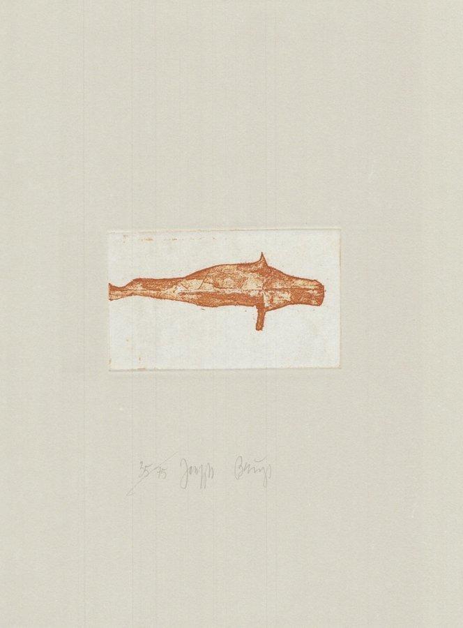 Joseph Beuys Zirkulationszeit: Meerengel Robbe I Grafik