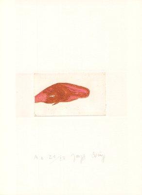 Joseph Beuys Druckgrafik Zirkulationszeit: Meerengel Spermwal