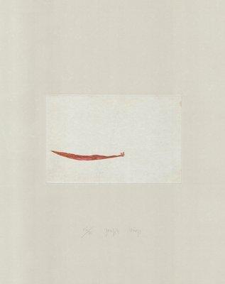 Joseph Beuys Druckgrafik Zirkulationszeit: Meerengel Seegurke