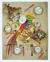 Daniel Spoerri Edition Die Rückseite des Paradiesvogels