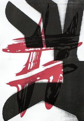 Anne Neukamp Snatch Grafik Lithographie