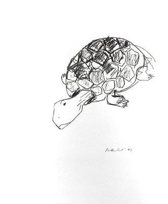 Stephan Balkenhol Schildkröte Grafik Lithografie